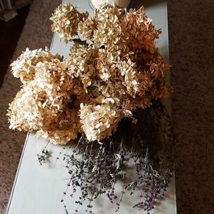 Real dried hydrangeas and thai basil.